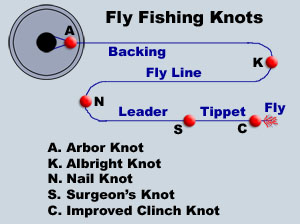 About flyfishing knots for Common fishing knots